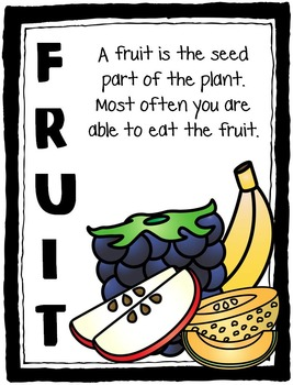 Yum!  Food Groups