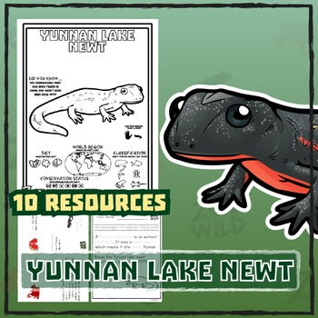 Yunnan Lake Newt -- 10 Wildlife Resources -- Wild Animal Learning