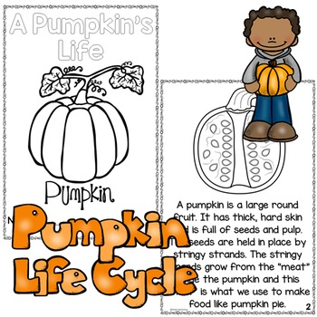 Pumpkins - A Pumpkin's Life Cycle Fall Activities Differentiated Readers