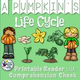 Halloween Activities - Pumpkin Life Cycle Differentiated Readers