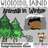 Animals in Winter | Winter Activities