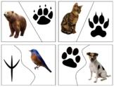 Z033: animal & paw print 2 part cards (semi self correcting) (4pgs)
