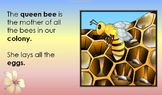 ZIP: VOLUME 1 - 4: HONEYBEE - FAMILY & HOME, LIFE CYCLE, BODY PARTS, CHORES