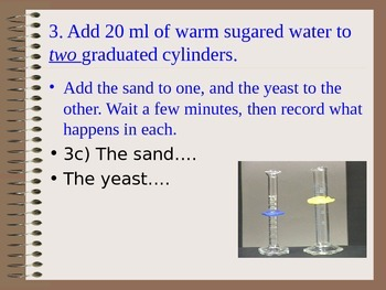 ZLesson 01 Part 1 Yeast Vs. Sand Lab