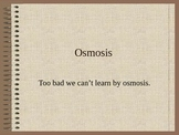 ZLesson 07 Osmosis