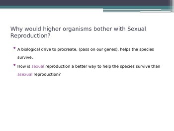 ZLesson 13 Sexual Reproduction