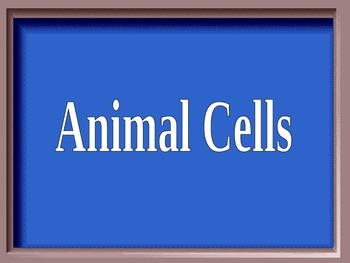 ZLesson 22 Jeopardy Round 1 Cells