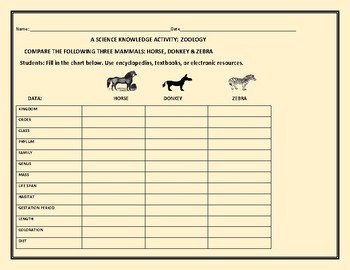 ZOOLOGY: COMPARE THE HORSE, DONKEY & ZEBRA:   A SCIENCE KNOWLEDGE ACTIVITY