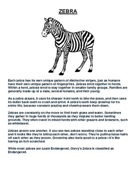 Zebra Article and Coloring Worksheet