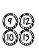 Zebra Class Numbers