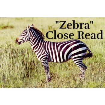 Zebra Close/Second Read; Unit 3 Code X;