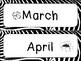 Zebra Decor and Classroom Labels