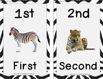 Zebra Print Math Word Wall Bundle