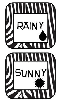 Zebra Print Today's Weather Is...