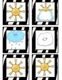 Zebra Print weather pictures