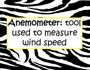 Zebra Weather Terms Posters