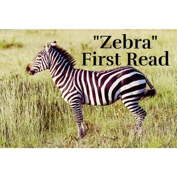 Zebra by Chaim Potok; Code X Unit 3; First Read