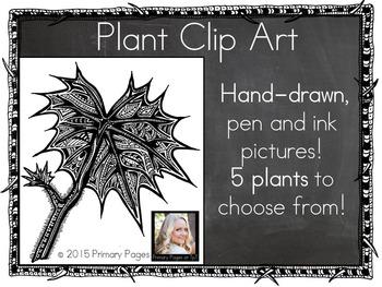 Plant Clip Art By Secret Creatures Teachers Pay Teachers
