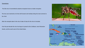 Zika Virus - Power Point all the facts, history, information, recent spread