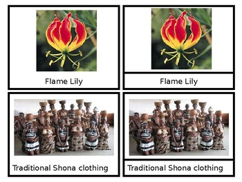 Zimbabwe - African Countries - Nomenclature Cards