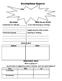 Zip Lock Ice Cream Experiment Worksheet
