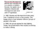 Zlata's Diary essay writing