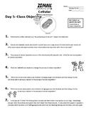 Zombie Apocalypse Day 5 Cellular Processes