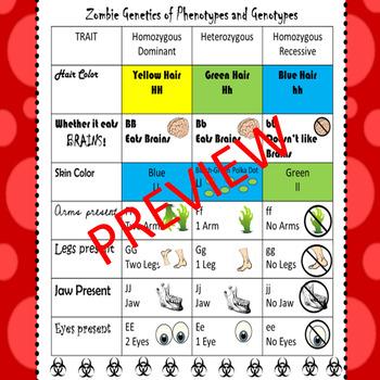 Zombie Genetics- Monohybrid Crosses