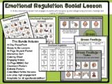 Emotional Regulation Social Lesson