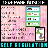 Self regulation Emotions/Feelings: 10 Session Plan - everything you need!