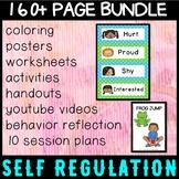 Self regulation Emotions/Feelings: 10 Session Plan - every