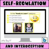 Social Emotional Self Regulation Activities Boom Cards