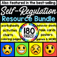 Self Regulation Posters and Charts