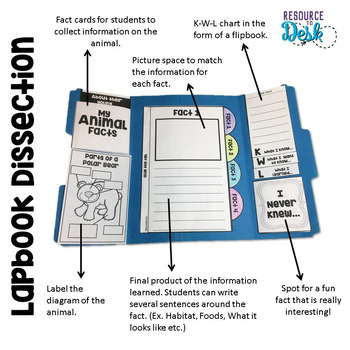 Zoo Animal BUNDLE Research Projects - Ten Zoo Animal Research Lapbooks