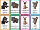 Zoo Animal Card Games