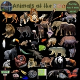 Zoo Animals Clip Art  Photo & Artistic Animal Real Clips D