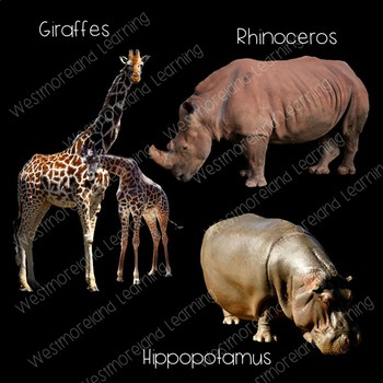 Zoo Animals Clip Art  Photo & Artistic Digital Stickers Over 100 Clips