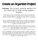 Zoo Animal Features Project