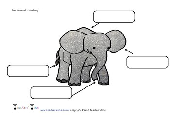 Zoo Animal Labelling