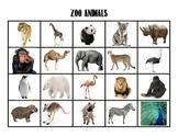 Zoo Animal Matching
