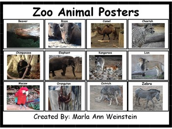 Zoo Animal Posters