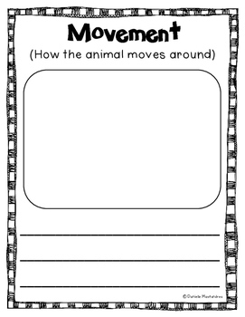 Zoo Animal Reports- Informational Non-Fiction Report Writing