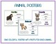 Zoo - Animal Research w QR Codes, Posters, Organizer - 14 Pack