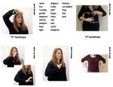 Zoo Animal Sign Language (ASL) Flash Cards