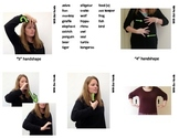 Zoo Animal Sign Language (ASL) Flash Cards