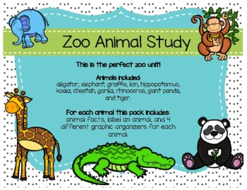 Zoo Animal Study