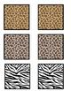 Zoo Animal Texture Matching Activity