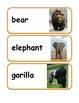 Zoo Animal Vocabulary / Word Wall Cards