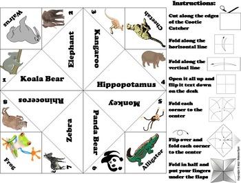 Zoo Animals Activity: Lion, Tiger, Polar Bear, Elephant, Monkey, Etc.