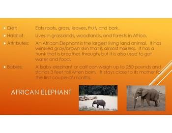 Zoo Animals 2-Pictures, diet, habitat, attributes, and babies.